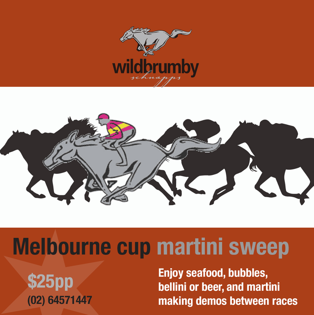 Melbourne cup martini sweep