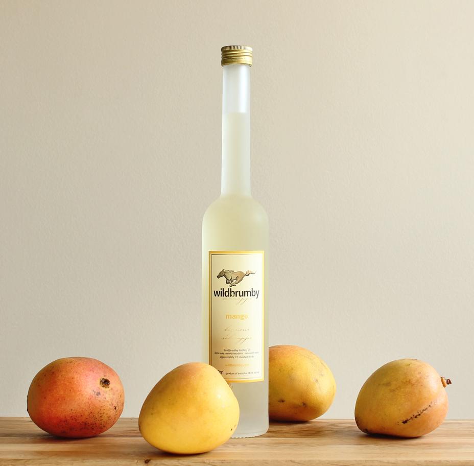 Mango blog promo